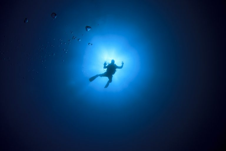 A diver descending against the sunlight from above.